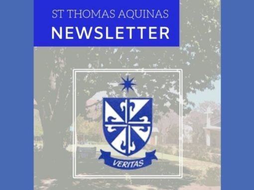 Newsletter – Issue 5